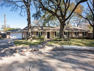 Houston Single Family Home For Sale: 2503 Lazybrook Drive