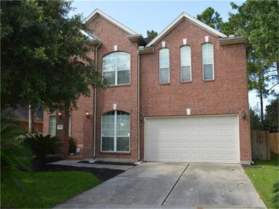 Spring Single Family Home For Sale: 6919 Autumn Rain Lane