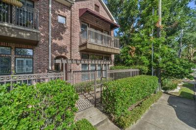 Houston Single Family Home For Sale: 127 Roy Street