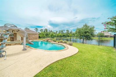Tomball Single Family Home For Sale: 22818 Wilbur Lane