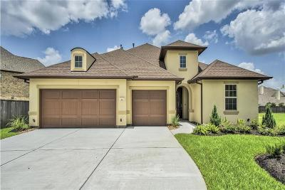The Woodlands Single Family Home For Sale: 34 Canopy Green Dr