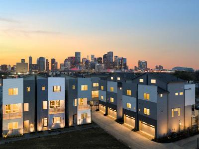 Houston Single Family Home For Sale: 1718 Eado Point Lane