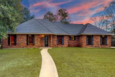 Liberty Single Family Home For Sale: 5004 Atascosito Drive