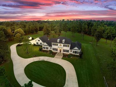 Montgomery Farm & Ranch For Sale: 21302 W Fm 1097 Road