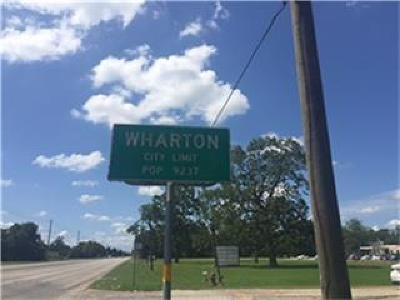 Wharton County Farm & Ranch For Sale: 1410 County Road 134