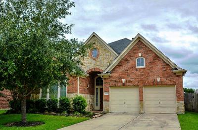 Sugar Land Single Family Home For Sale: 3919 Fallsbrook Court