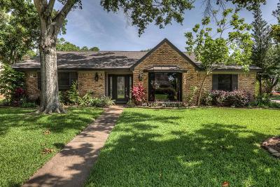 Houston Single Family Home For Sale: 10602 Meadow Lake Lane