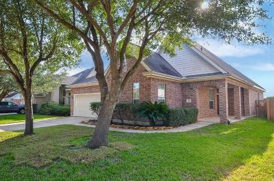 Houston Single Family Home For Sale: 4810 Plum Forest Road