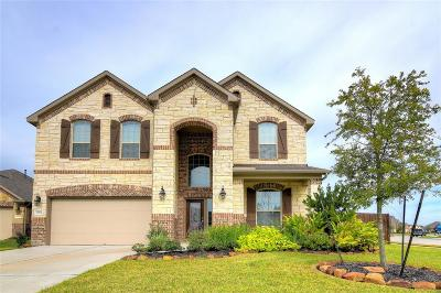 Katy Single Family Home For Sale: 22302 Bandera Palms Court