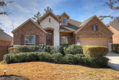Tomball Single Family Home For Sale: 23 Garden Path Place