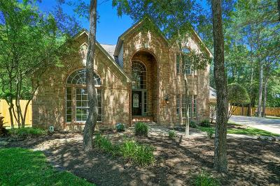 The Woodlands Single Family Home For Sale: 2 E Rock Wing Place