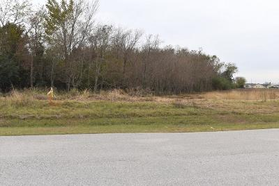 Tomball Residential Lots & Land For Sale: Commercial Park Road