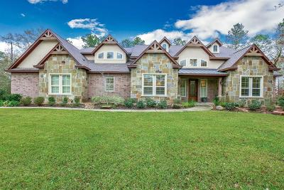Montgomery Single Family Home For Sale: 23523 High Meadow Estates Drive