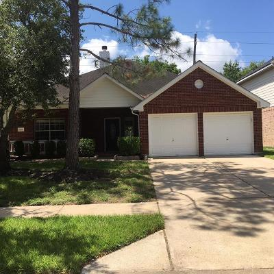 Katy Single Family Home For Sale: 19927 Big Canyon Drive
