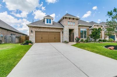 Tomball Single Family Home For Sale: 12903 Arlington Meadows Lane