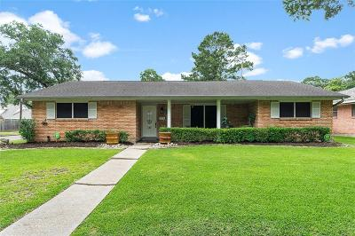 Houston Single Family Home For Sale: 242 Outlook Drive