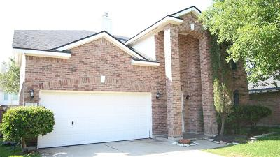 Houston Single Family Home For Sale: 10239 Dusty Hollow Lane