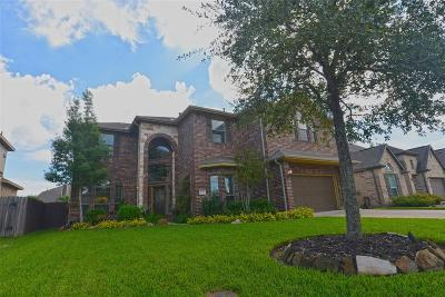 League City Single Family Home For Sale: 4705 La Escalona Drive