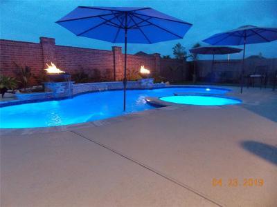 Galveston County Rental For Rent: 12608 Solano Drive