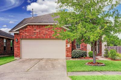 Manvel Single Family Home For Sale: 22 Blisten Spring Lane