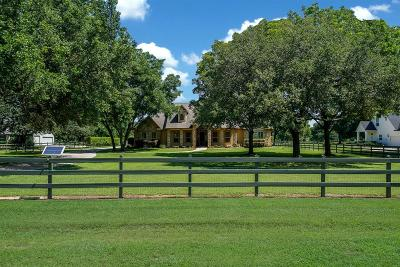 Fort Bend County Single Family Home For Sale: 32022 Wendt Park Trace