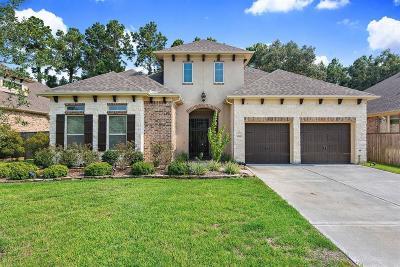 Porter Single Family Home For Sale: 19916 Cullen Ridge Drive