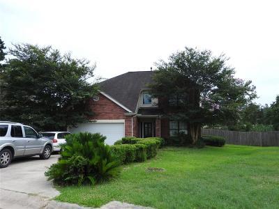 Single Family Home For Sale: 1005 Oak Falls Drive