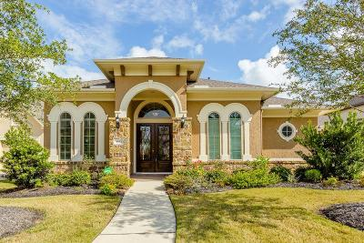 Katy Single Family Home For Sale: 3823 Emery Heights Lane