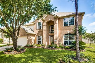 Tomball Single Family Home For Sale: 12010 N Sawtooth Canyon Drive