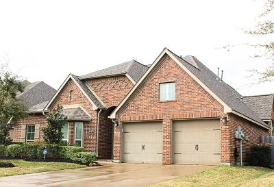 Shadow Creek Ranch Single Family Home For Sale: 2000 Sunset Springs Drive