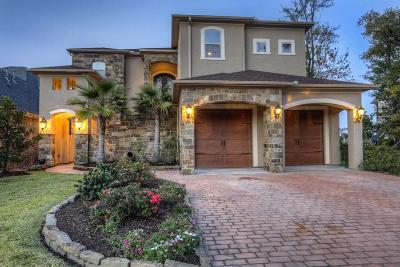 Montgomery Single Family Home For Sale: 16824 Falcon Sound Drive