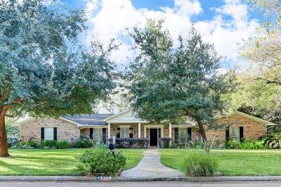 Sugar Land Single Family Home For Sale: 603 Salerno Street
