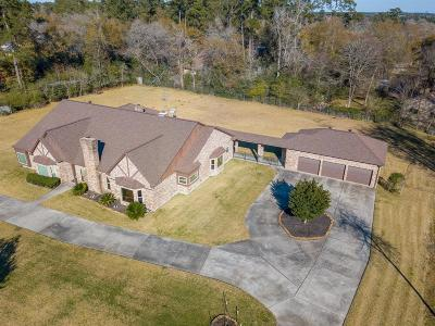 Tomball Single Family Home For Sale: 30818 William Juergens Drive