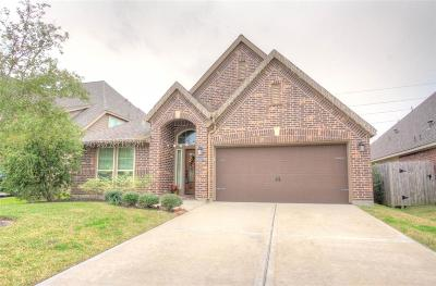 Pearland Single Family Home For Sale: 14004 Mountain Sage Court