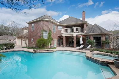 Sugar Land Single Family Home For Sale: 4111 Woodbriar Court