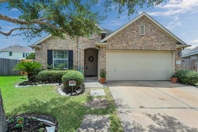 Katy Single Family Home For Sale: 20707 Pine Rain Court