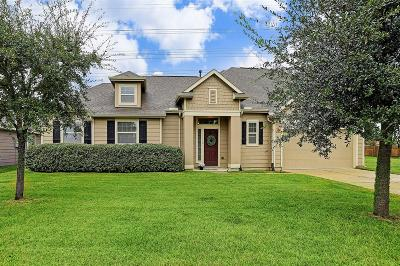 Tomball Single Family Home For Sale: 11310 Crestbrook Park Lane