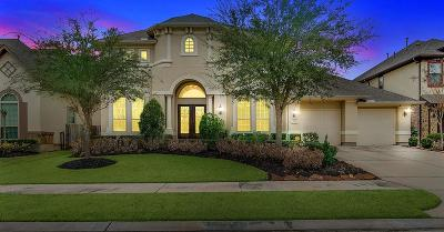 Sugar Land Single Family Home For Sale: 3018 Barrons Way