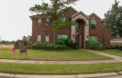 Tomball Single Family Home For Sale: 12703 Rocky Briar Lane
