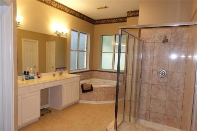 Tomball Single Family Home For Sale: 12403 Lake Vista Drive