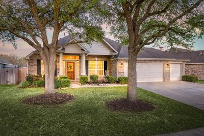 Cypress Single Family Home For Sale: 7506 Rain Meadow Lane