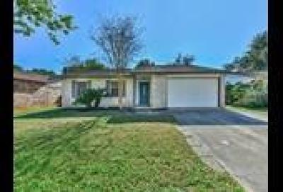Hockley Single Family Home For Sale: 24219 Broken Bow Lane