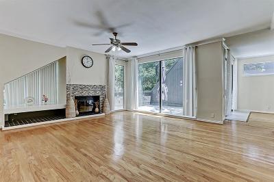 Houston Condo/Townhouse For Sale: 390 Litchfield Lane