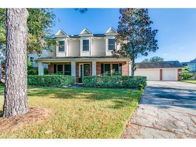 Houston Single Family Home For Sale: 16615 Rosillion Court