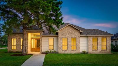 Montgomery Single Family Home For Sale: 155 Wick Willow Drive