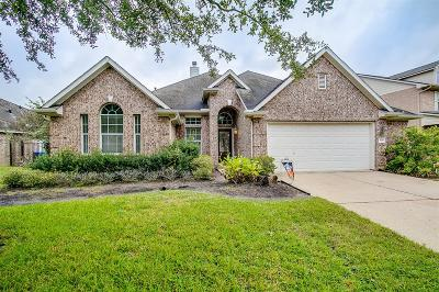 Fort Bend County Single Family Home For Sale: 5818 Horseshoe Falls
