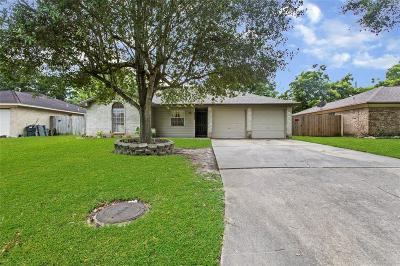 Rosenberg Single Family Home For Sale: 3908 Junker Street