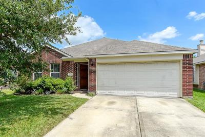 Tomball Single Family Home For Sale: 11914 Canyon Falls Drive