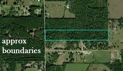 Country Home/Acreage For Sale: County Road 2224