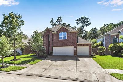 Willis, Montgomery, The Woodlands, Conroe, Shenandoah, Spring Single Family Home For Sale: 30427 Tynham Springs Drive